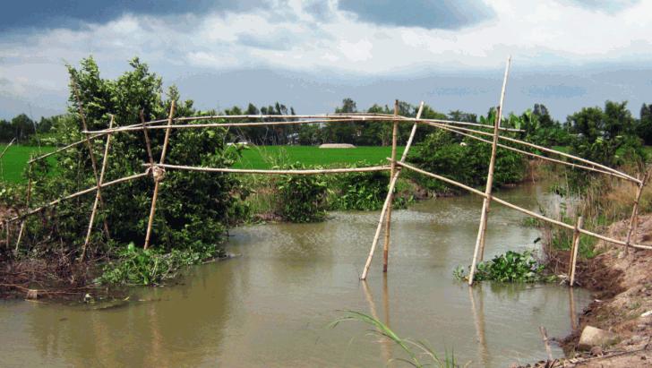 1. The Monkey Bridge, Vietnam - Most Dangerous Bridges in the World