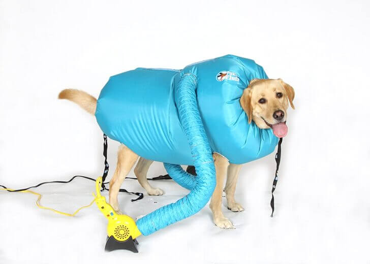 3. Doggie Dryer   Best Dumbest Inventions for Dogs
