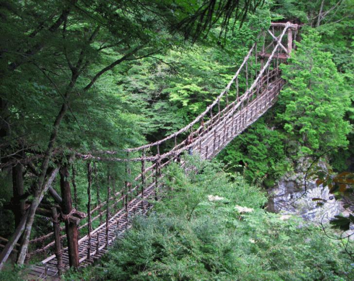 3. Vine Footpaths Aka Bridges, Japan