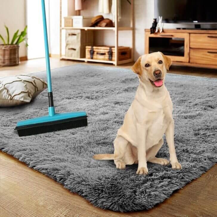 7. Doggie Broom