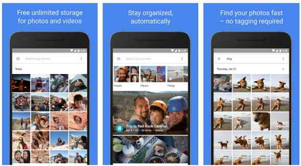 best gallery app for android 2020