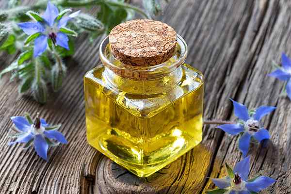 Benefits of Borage Oil for Skin, Hair, and Health