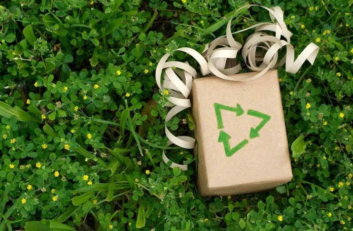 Best Ethical and Ecological Green Christmas Gift Ideas