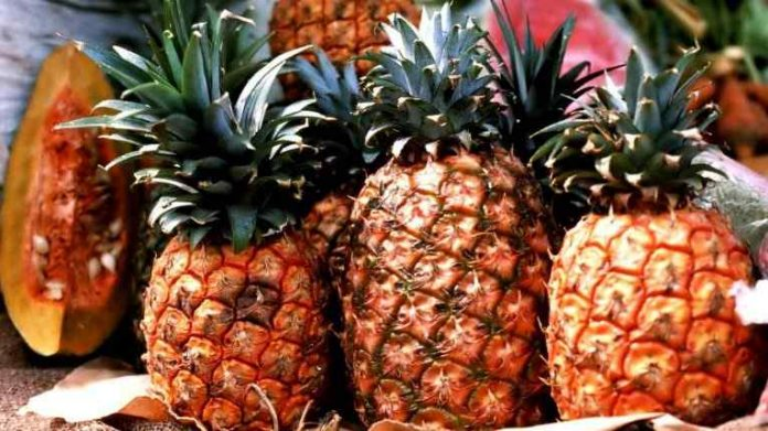 Best Pineapple Women Perfumes