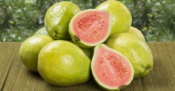 Best Guava Women Perfumes