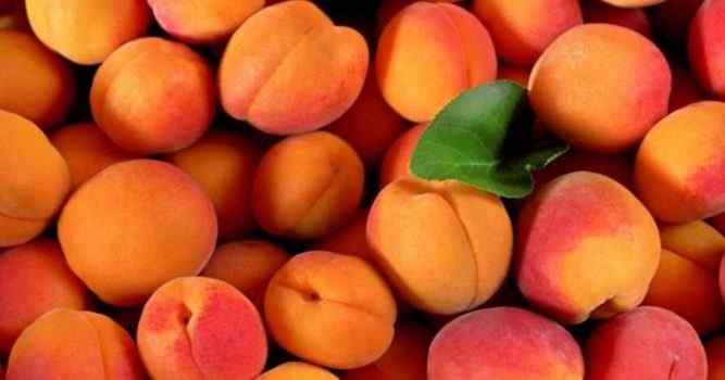 Best Apricot Perfumes For Women
