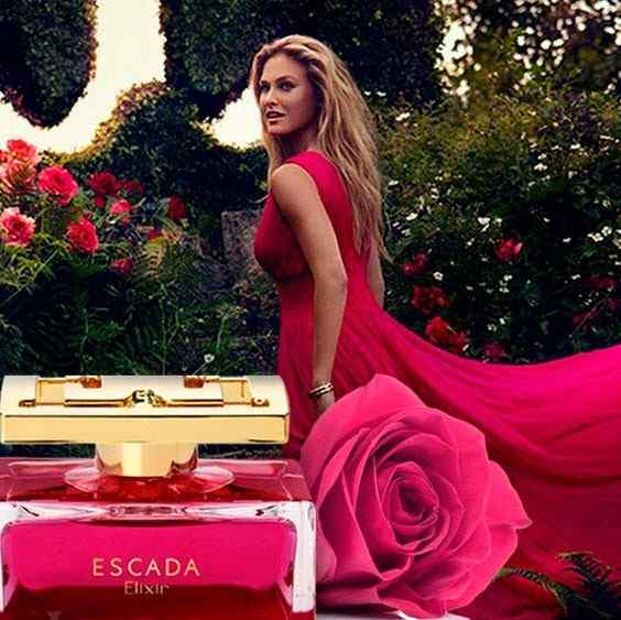 Best Escada Perfumes for Women