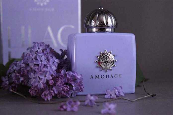 Best Amouage Perfumes For Women